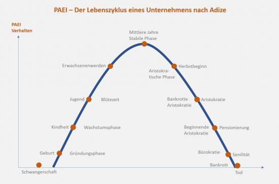 PAEI - Lebenszyklus eines Unternehmens